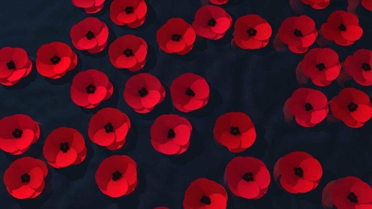 Queensland Remembers WebGL poppies.