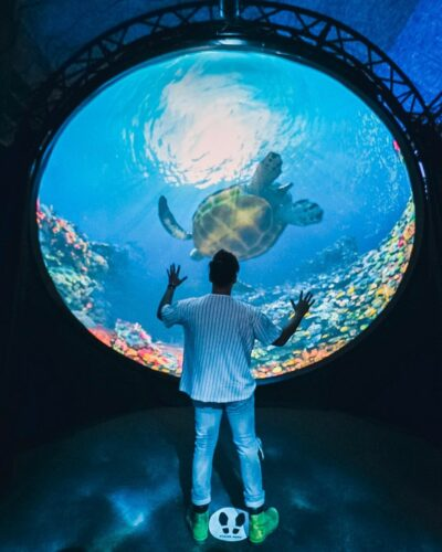 Man stands in front of large hemisphere projection dome for Into the Blue immersive animation.